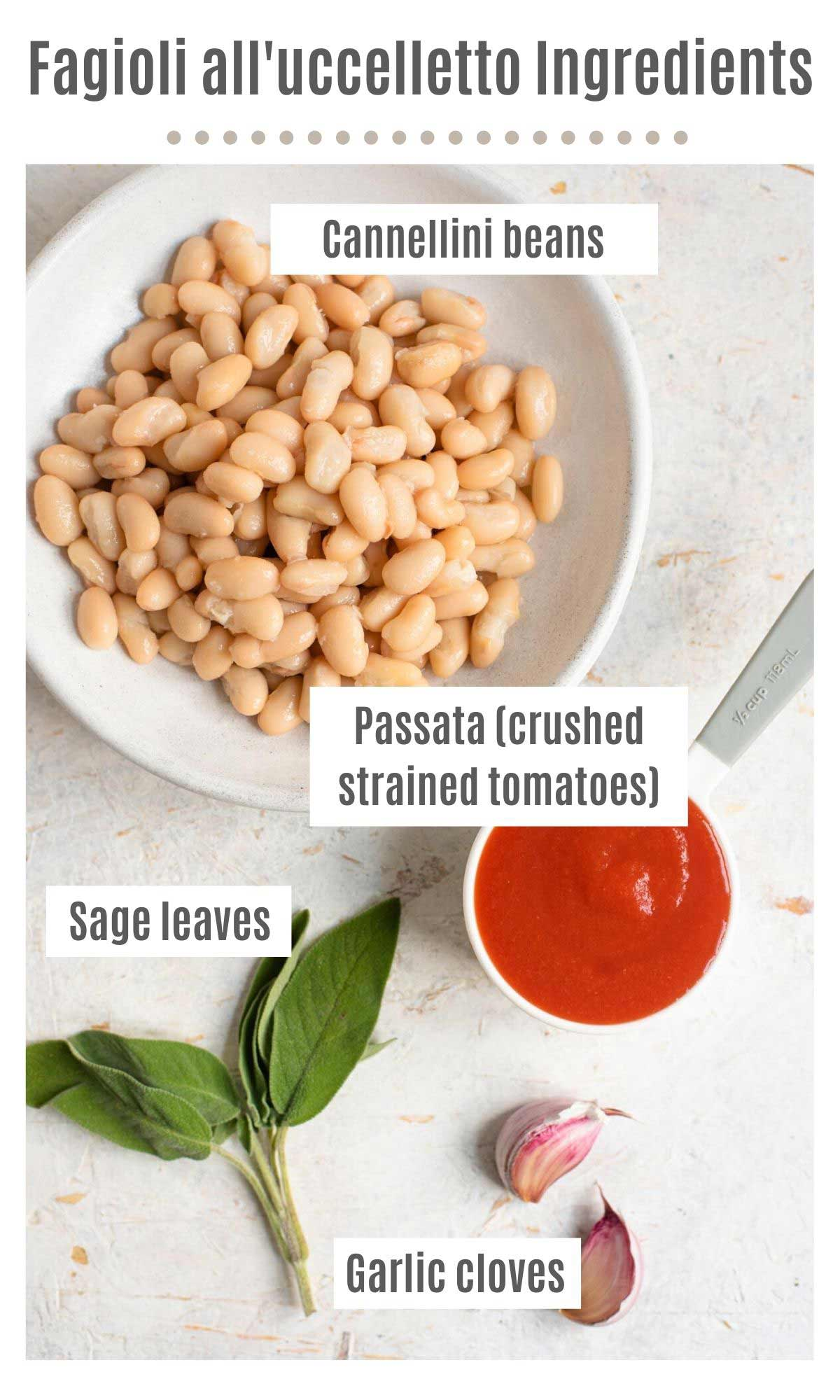 An overhead shot of all the ingredients you need to make fagioli all'uccelletto