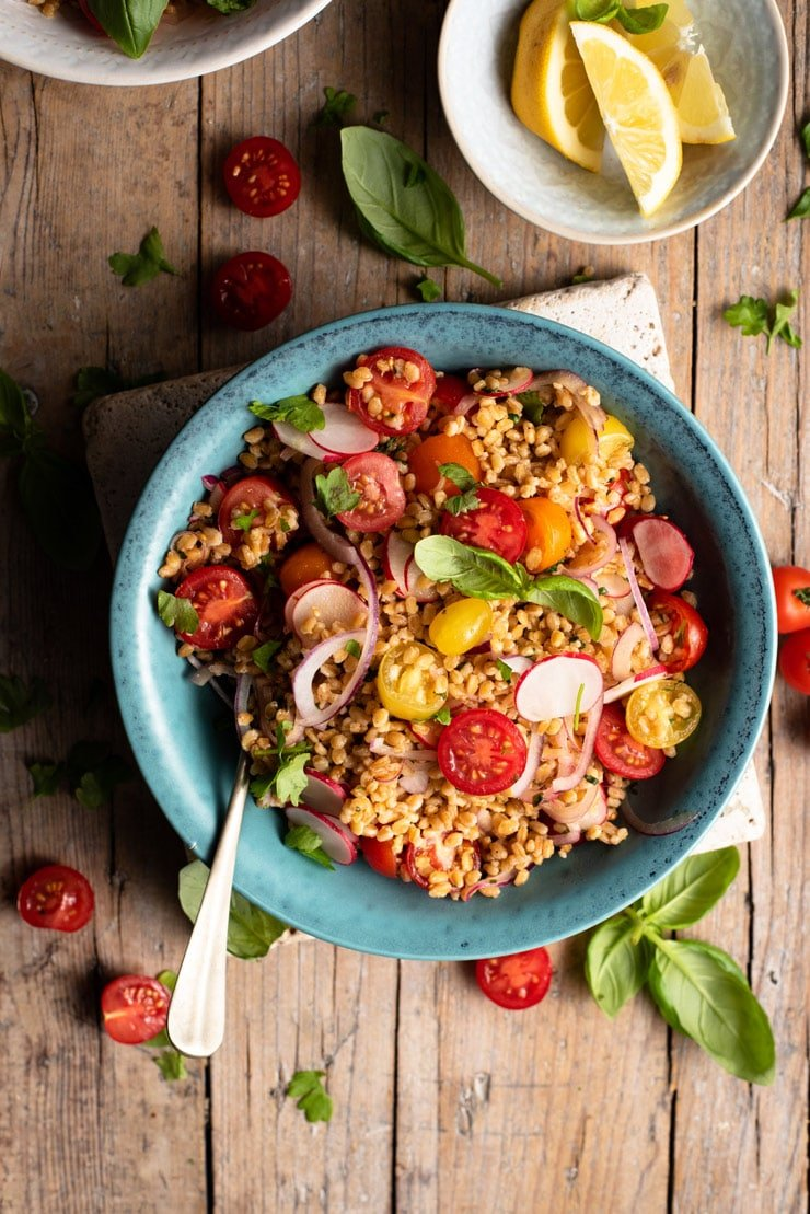 An overhead shot of an Italian farro salad in a bowl with cherry tomatoes and fresh basil