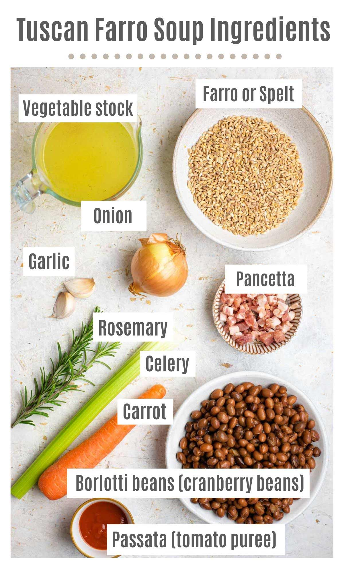 An overhead shot of all the ingredients you need to make Tuscan farro soup