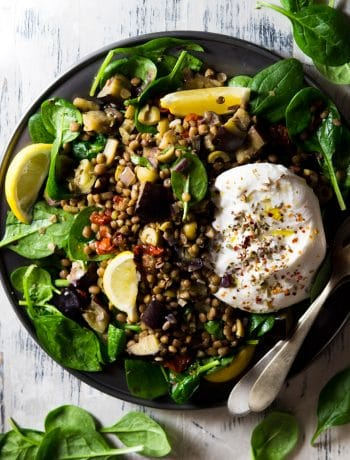 a loaded lentil salad on a pewter plate topped with burrata cheese