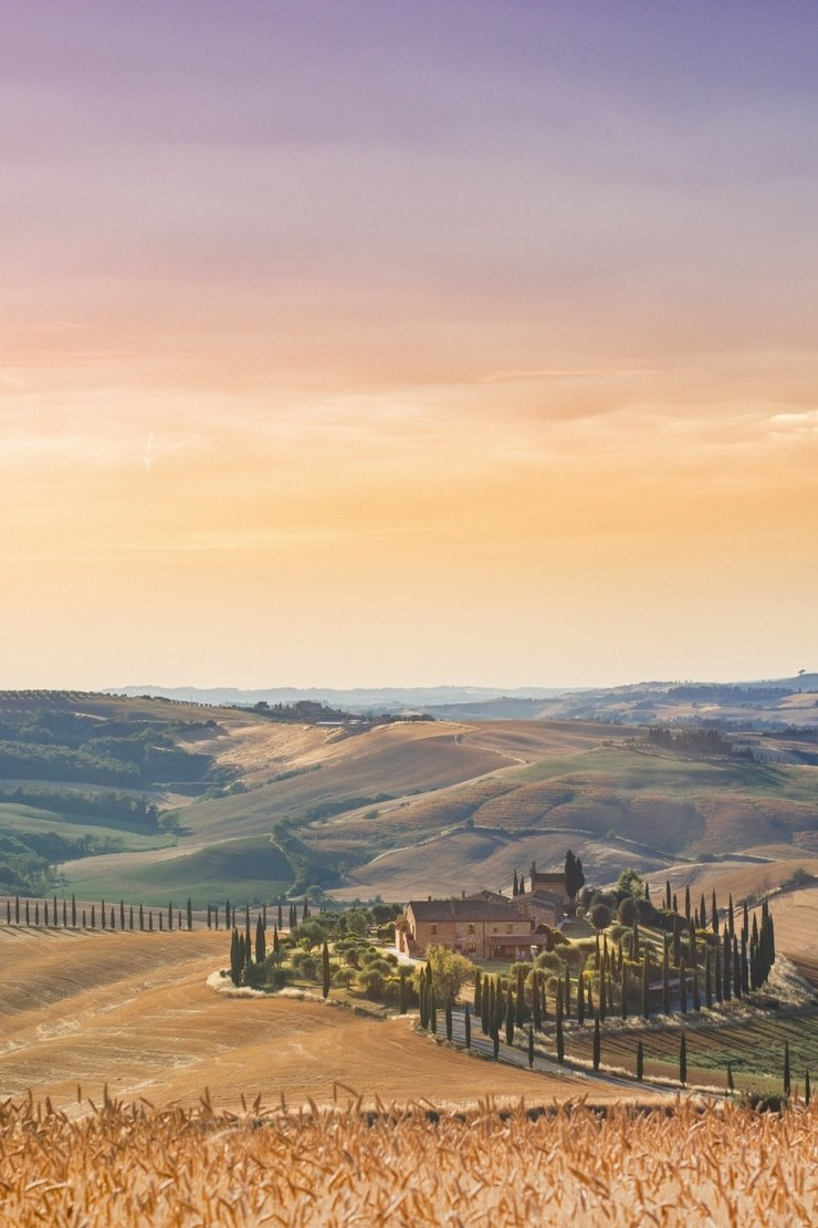 A photo of the Tuscan countryside, an old rustic farmhouse with cypress trees surrounding it