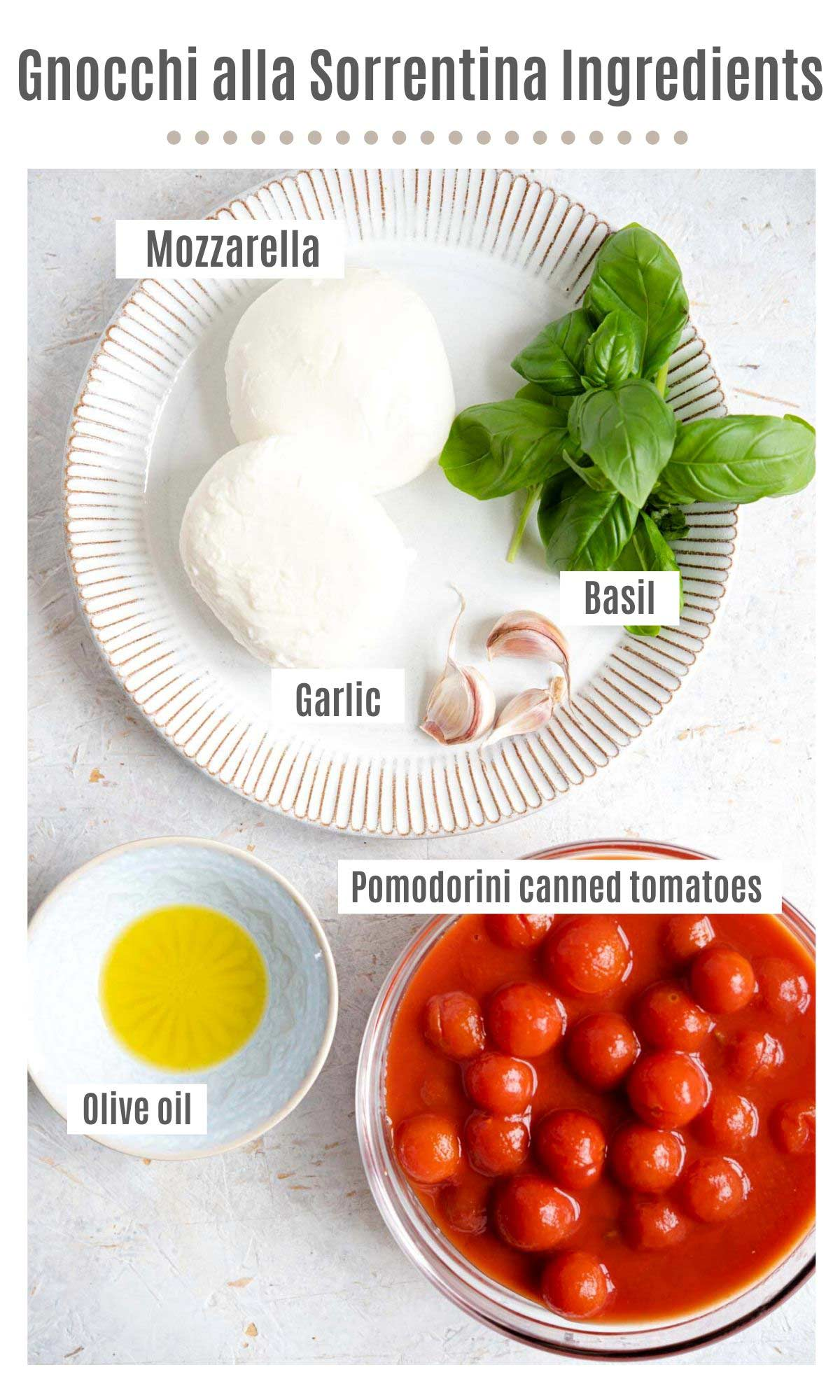 An overhead shot of all the ingredients needed to make gnocchi alla sorrentina