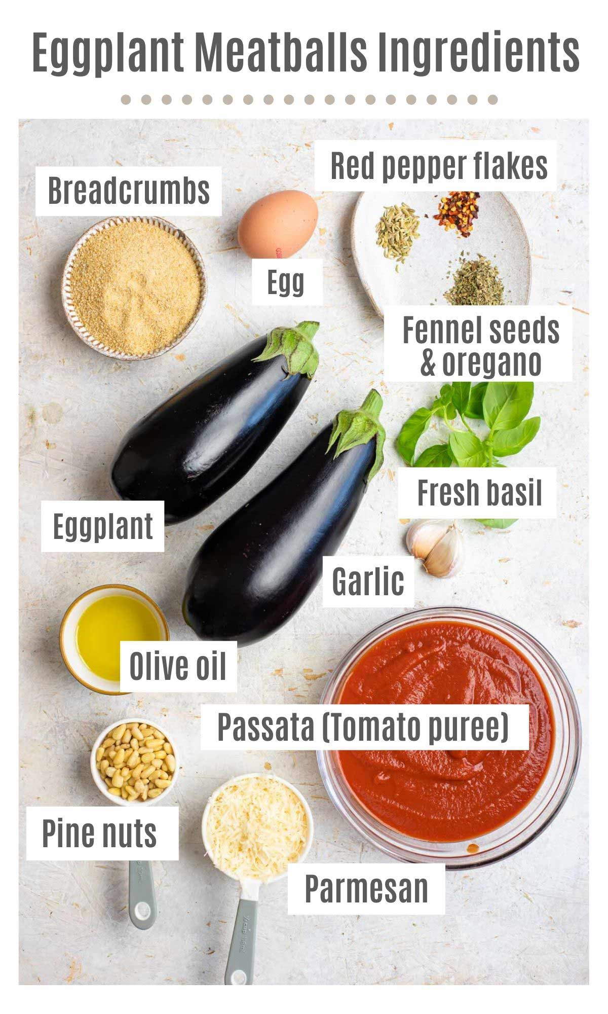 An overhead shot of all the ingredients you need to make eggplant meatballs