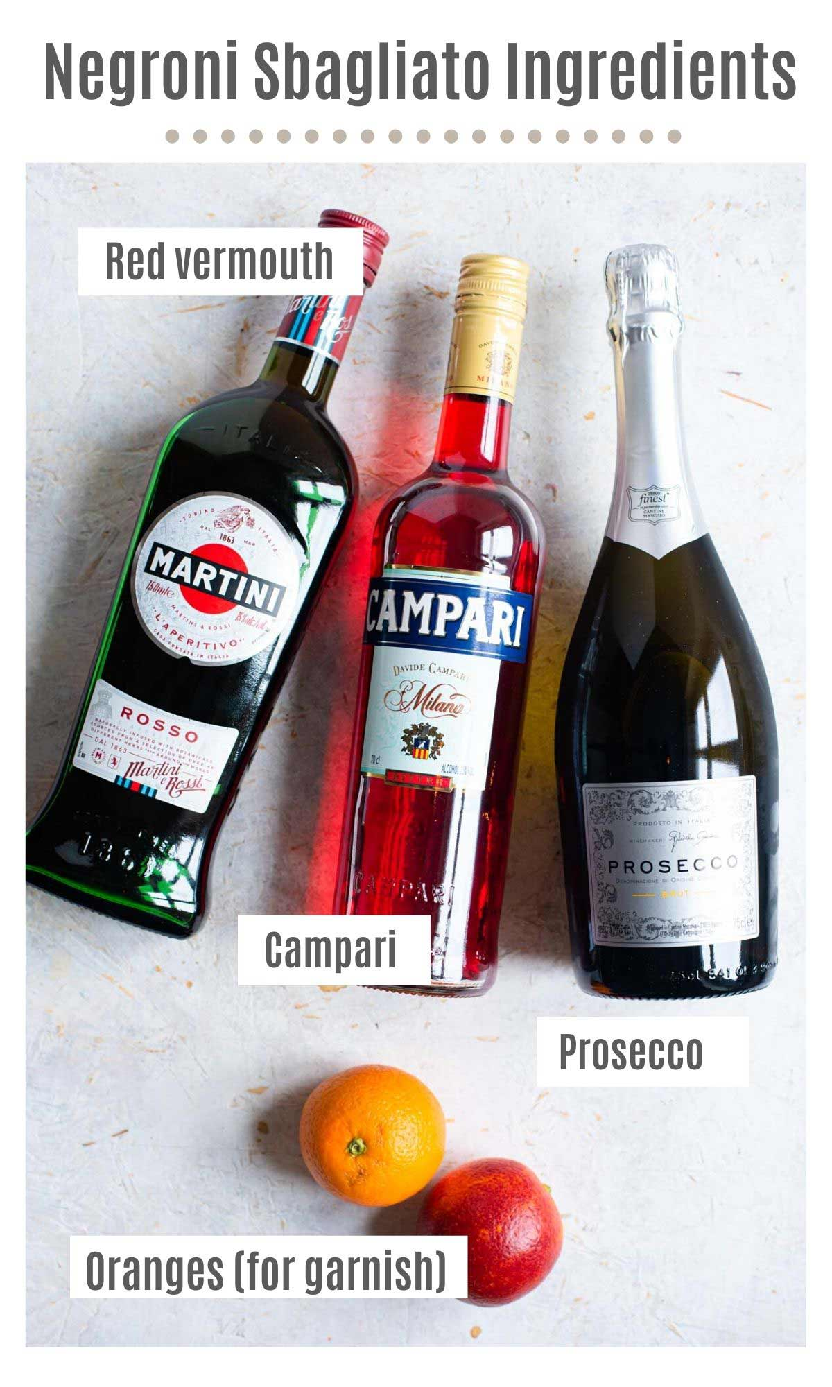 An overhead shot of all the ingredients you need to make a Negroni Sbagliato