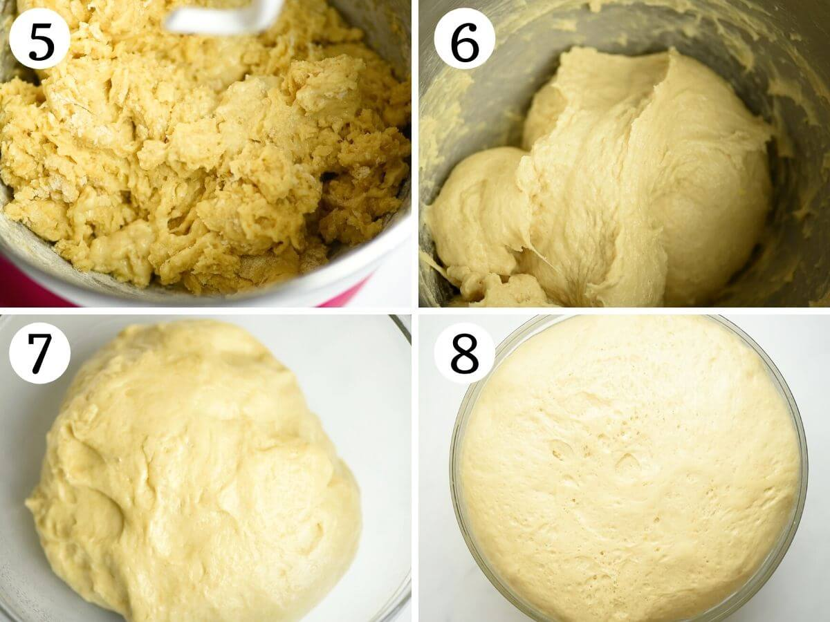 Step by step photos showing how to prepare Italian Easter bread dough in a stand mixer