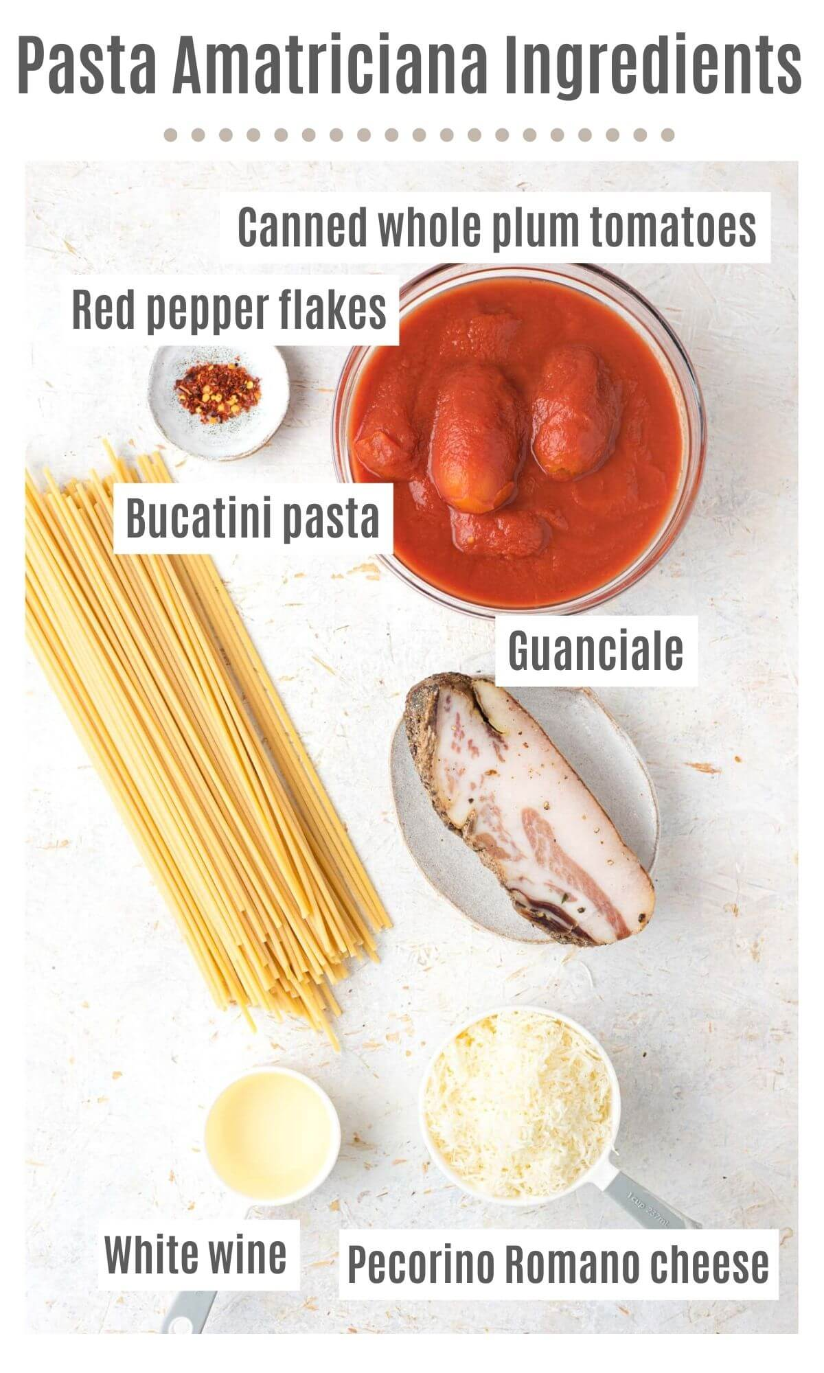 An overhead shot of all the ingredients you need to make Bucatini all'Amatriciana