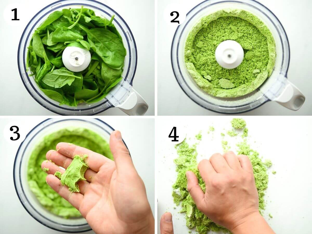 Step by step photos showing how to make spinach pasta dough in a food processor